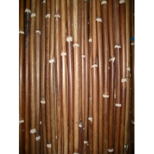 Malacca cane knot trimmed 1/3 quality 22/24mm